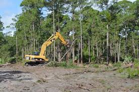 land-clearing-image-1